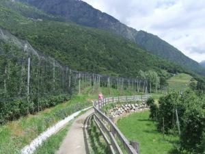 Algunder Waalweg - Tappeinerweg 019
